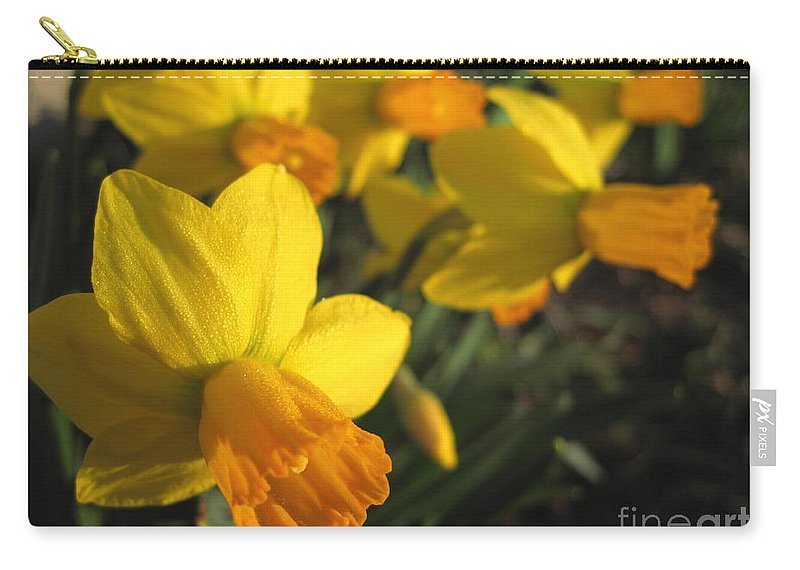 Mccombie Carry-all Pouch featuring the photograph Dwarf Cyclamineus Daffodil Named Jet Fire by J McCombie