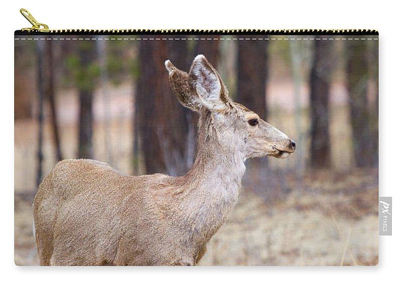 Mule Deer Carry-all Pouch featuring the photograph Easter Does by Steve Krull
