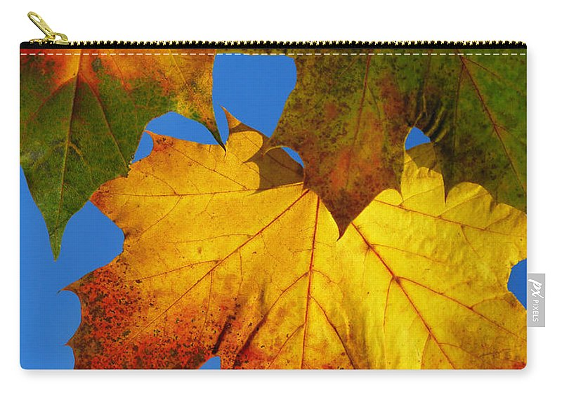 Abstract Carry-all Pouch featuring the photograph Fall by TouTouke A Y