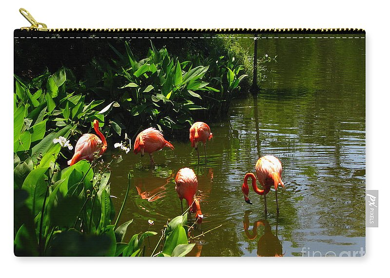 Flamingos Carry-all Pouch featuring the photograph Flamingos by Greg Patzer