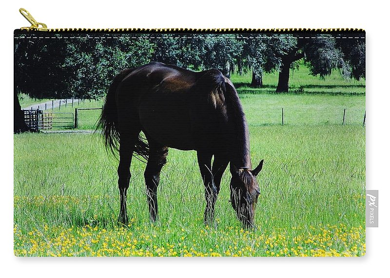 Horse Carry-all Pouch featuring the photograph Grazing Horse In The Flowers by D Hackett