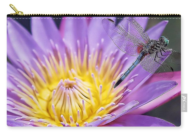 Water Lily Carry-all Pouch featuring the photograph Hanging Around by Joyce Baldassarre