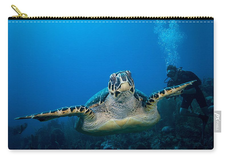 Hawksbill Turtle Carry-all Pouch featuring the photograph Hawksbill by Jean Noren