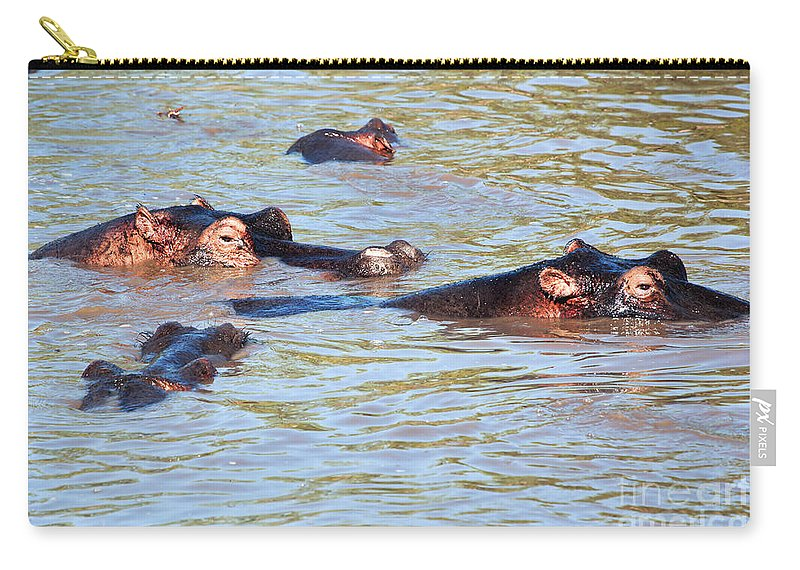 Hippo Carry-all Pouch featuring the photograph Hippopotamus Group In River. Serengeti. Tanzania. by Michal Bednarek