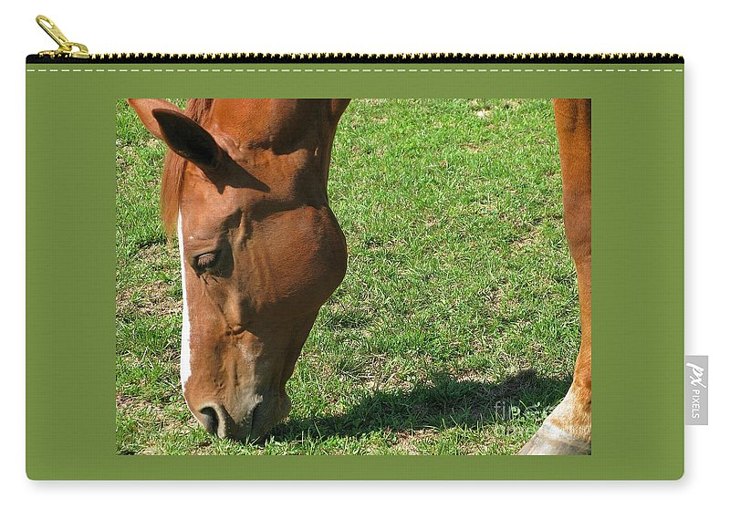 Horse Carry-all Pouch featuring the photograph In Green Pasture by Ann Horn