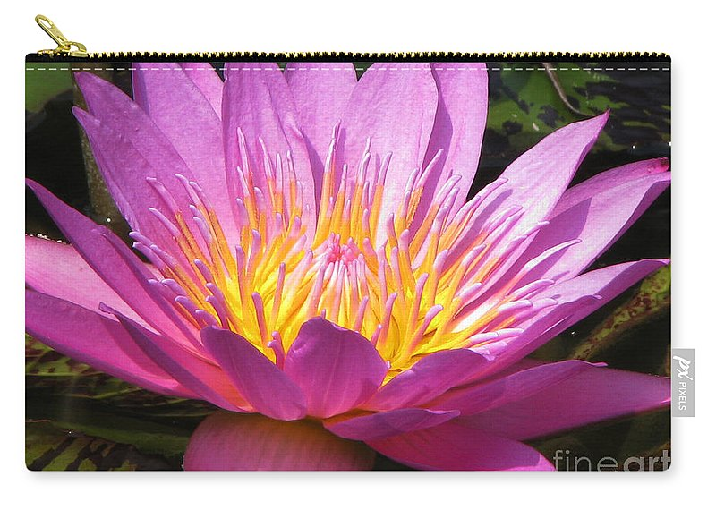 Lilly Carry-all Pouch featuring the photograph It by Amanda Barcon