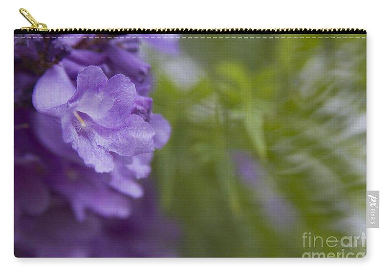 Carry-all Pouch featuring the photograph Jacaranda Mimosifolia Makawao Maui Hawaii by Sharon Mau