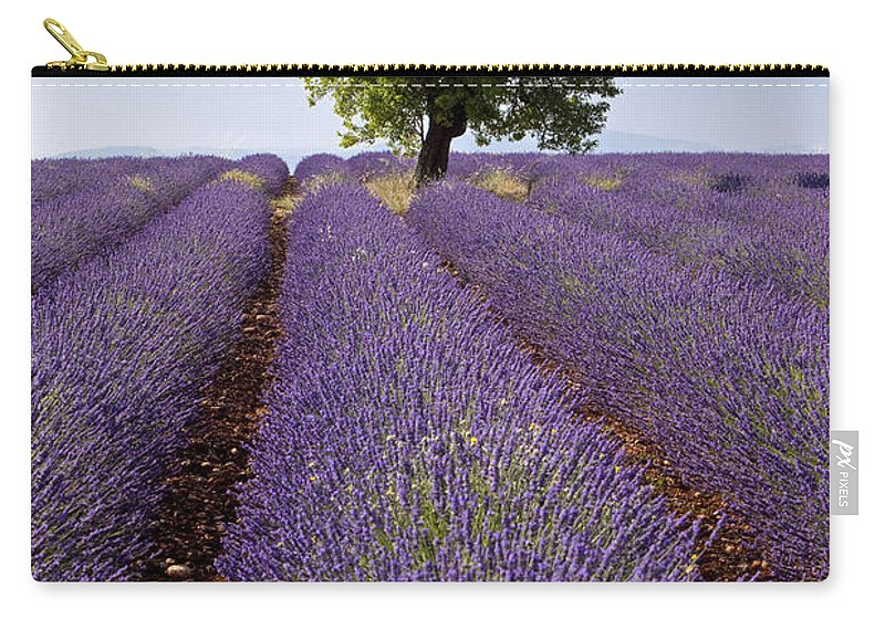 Lavender Carry-all Pouch featuring the photograph Lavender Field by Brian Jannsen