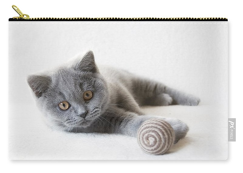 Katze Carry-all Pouch featuring the pyrography Little Friend by Steffen Gierok