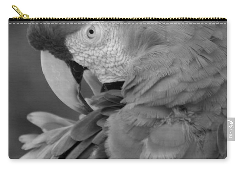 Macaws Carry-all Pouch featuring the photograph Macaws Of Color B W 17 by Rob Hans