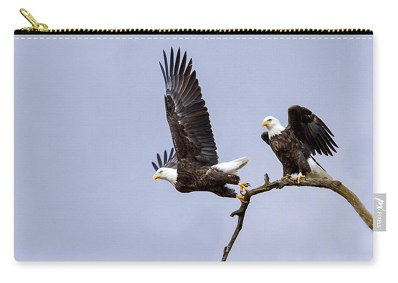 Eagle Carry-all Pouch featuring the photograph Majestic Beauty 2 by David Lester