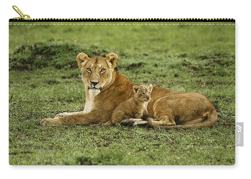 Lion Carry-all Pouch featuring the photograph Mama's Little Baby by Michele Burgess
