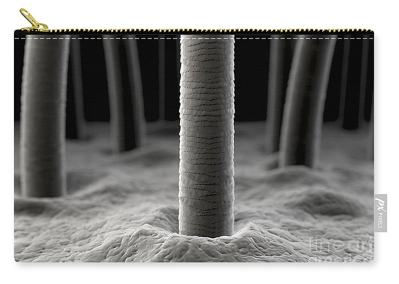Digitally Generated Image Carry-all Pouch featuring the photograph Microscopic Skin by Science Picture Co