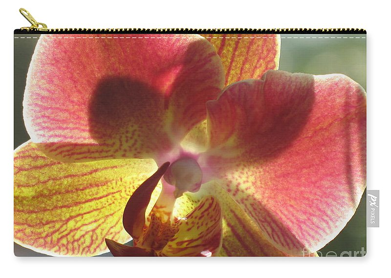 Orchid Carry-all Pouch featuring the photograph Orchid by Christiane Schulze Art And Photography