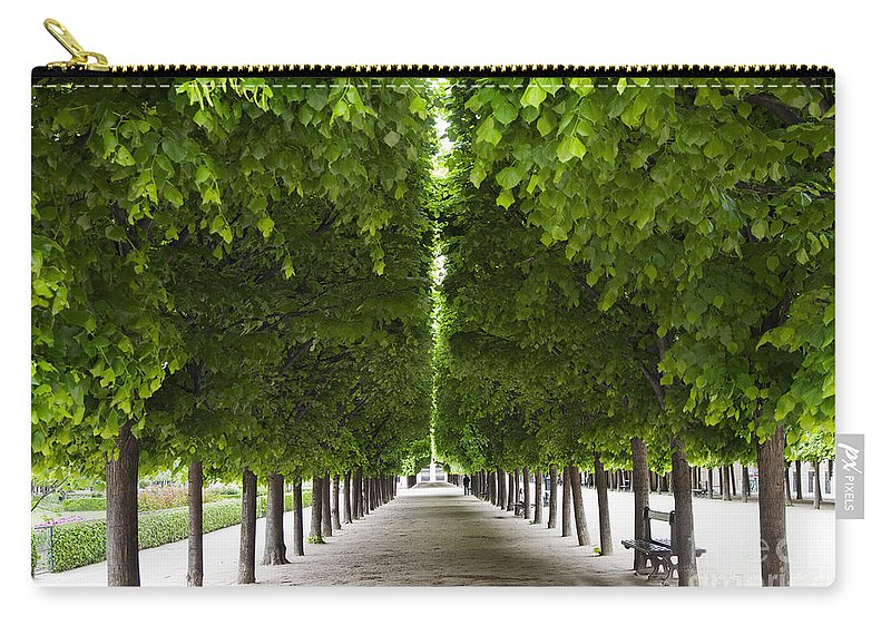 Europe Carry-all Pouch featuring the photograph Palais Royal Trees by Brian Jannsen