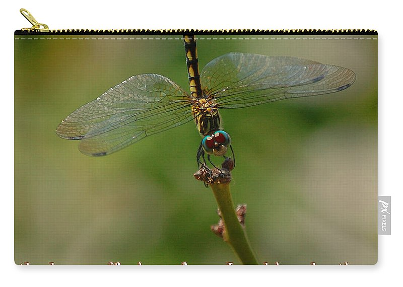 Dragonfly Carry-all Pouch featuring the photograph 2 Peter 3 Verse 15 by Leticia Latocki