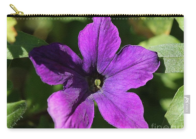 Mccombie Carry-all Pouch featuring the painting Petunia Hybrid From The Sparklers Mix by J McCombie