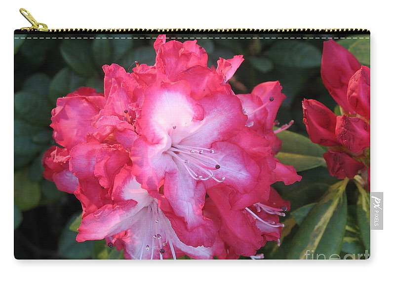 Rhododendron Carry-all Pouch featuring the photograph Pink Rhododendron by Christiane Schulze Art And Photography
