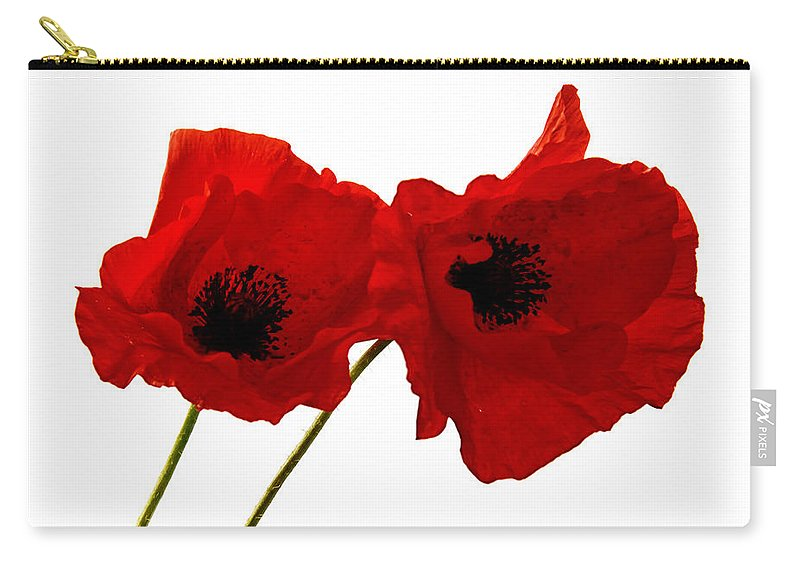 Background Carry-all Pouch featuring the photograph Poppies by TouTouke A Y