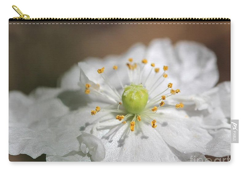 Mccombie Carry-all Pouch featuring the photograph Poppy From The Angel's Choir Mix by J McCombie