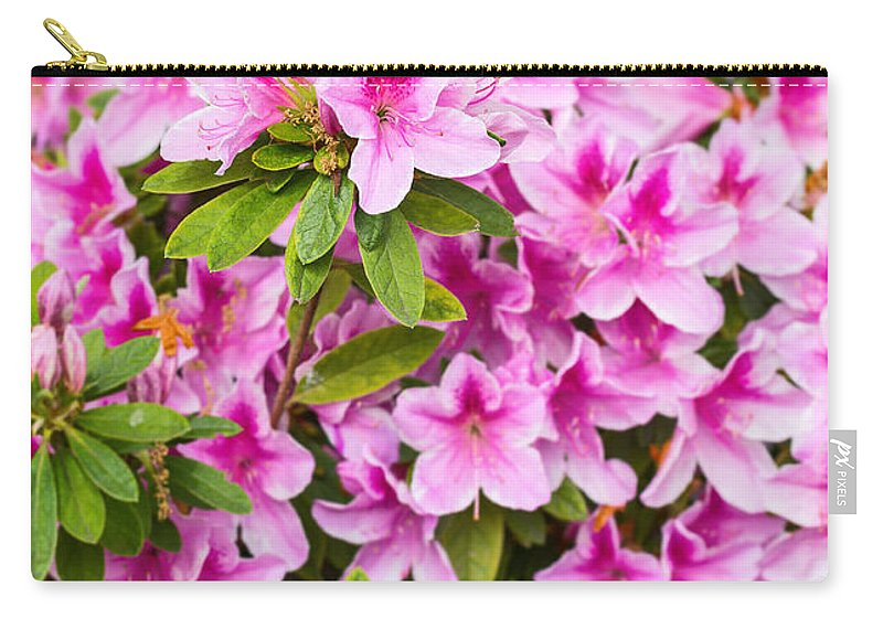 Pink Carry-all Pouch featuring the photograph Pretty In Pink - Spring Flowers In Bloom. by Jamie Pham