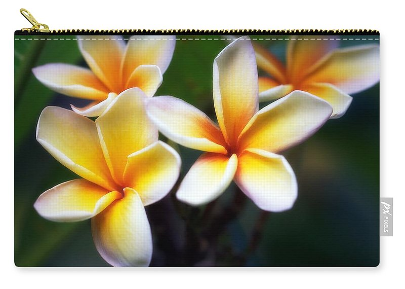 Floral Carry-all Pouch featuring the photograph Pua Melia by Jade Moon