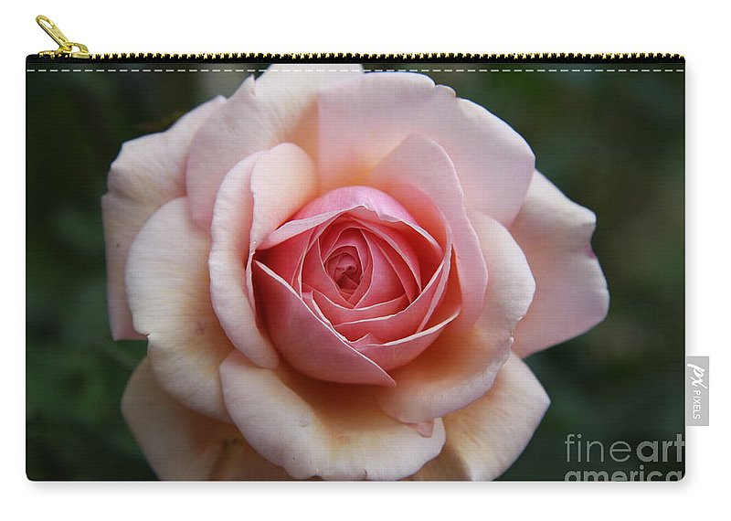 Rose Carry-all Pouch featuring the photograph Pure Beauty by Christiane Schulze Art And Photography