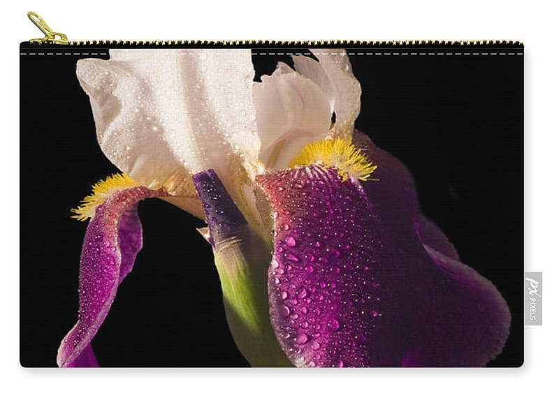 Iris Carry-all Pouch featuring the photograph Purple And White Bearded Iris by Keith Webber Jr