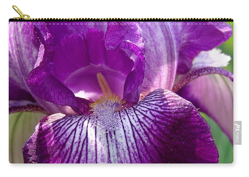 Purple Carry-all Pouch featuring the photograph Purple And White Iris by David Hohmann