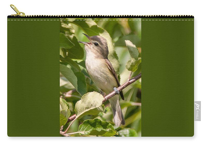 Bird Carry-all Pouch featuring the photograph Red-eyed Vireo by Richard Kitchen