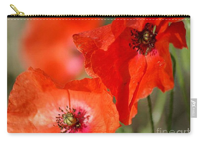 Poppies Carry-all Pouch featuring the photograph Red Poppies by Carol Lynch