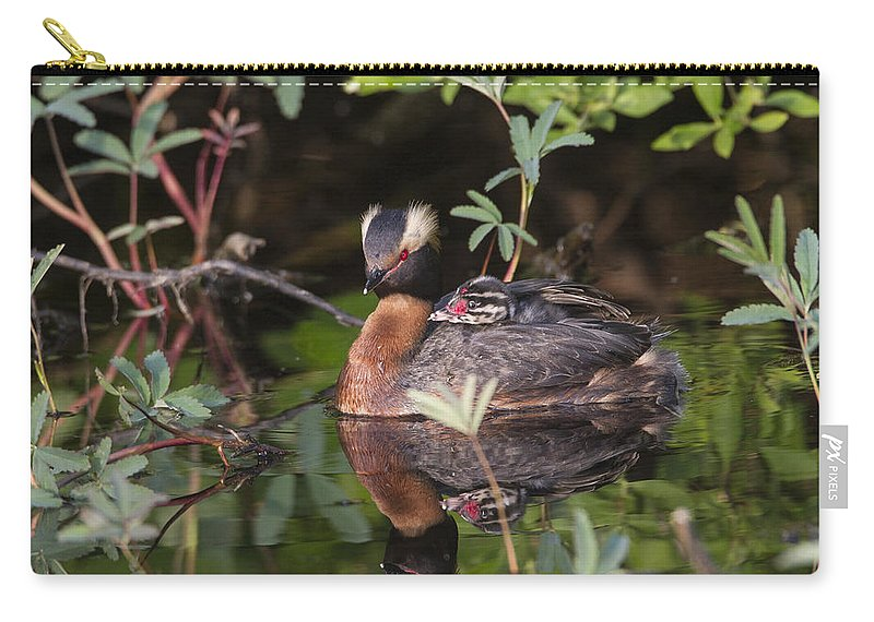 Doug Lloyd Carry-all Pouch featuring the photograph Resting by Doug Lloyd