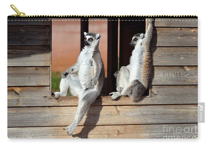 Ring Tailed Lemur Carry-all Pouch featuring the photograph Ring Tailed Lemurs by George Atsametakis