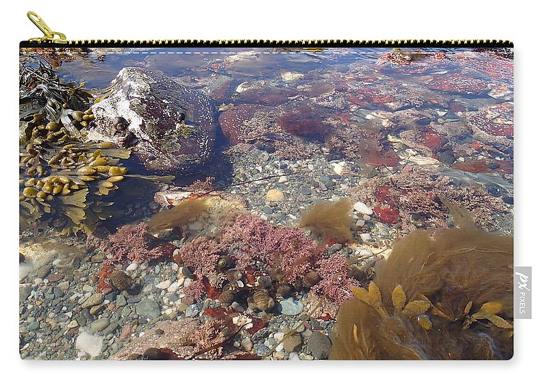 Nature Carry-all Pouch featuring the photograph Seaweed by Robert Nickologianis