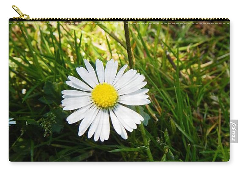 Nature Carry-all Pouch featuring the photograph Small Smaller And Smallest by Loreta Mickiene