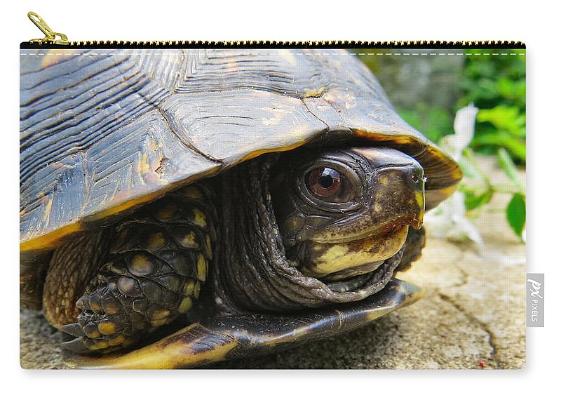 Nature Carry-all Pouch featuring the photograph Smiley by Art Dingo