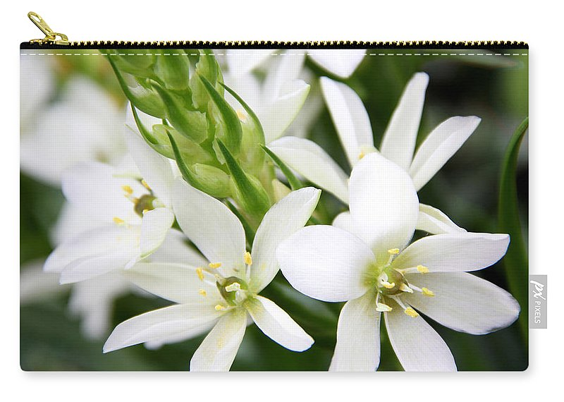 Star Of Bethlehem Carry-all Pouch featuring the photograph Star Of Bethlehem by Erin McCandless