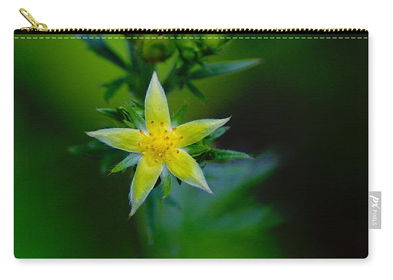 Flowers Carry-all Pouch featuring the photograph Starflower by Ben Upham III