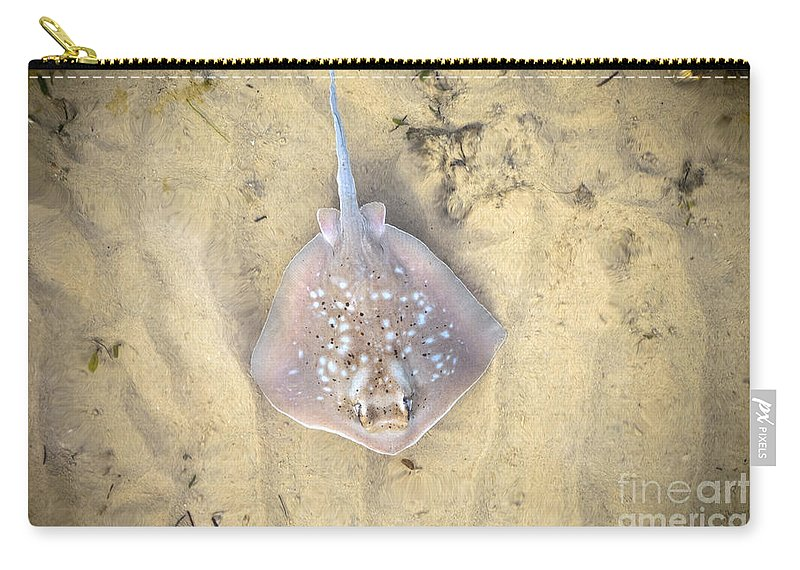 Aquatic Carry-all Pouch featuring the photograph Stingray by Tim Hester