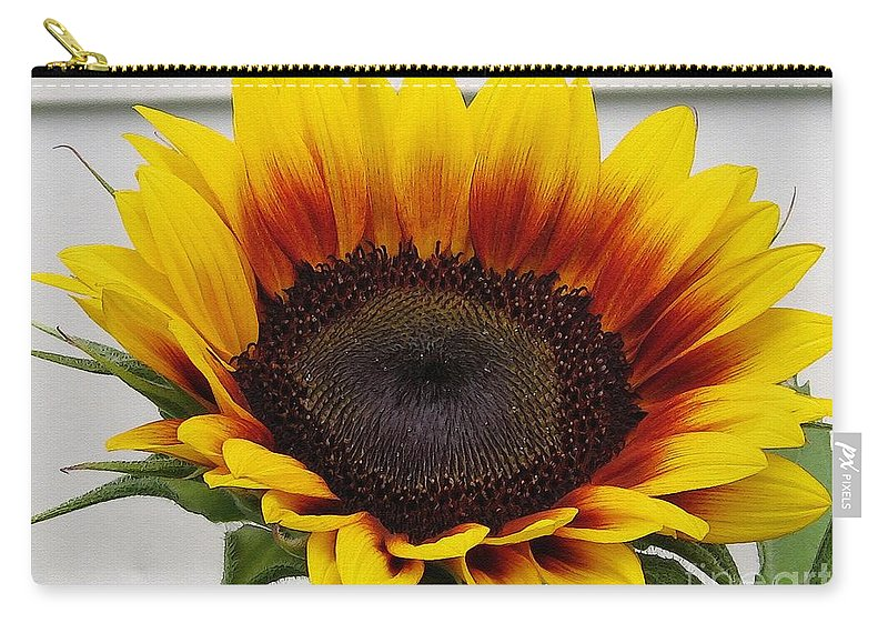 Mccombie Carry-all Pouch featuring the painting Sunflower Named The Joker by J McCombie