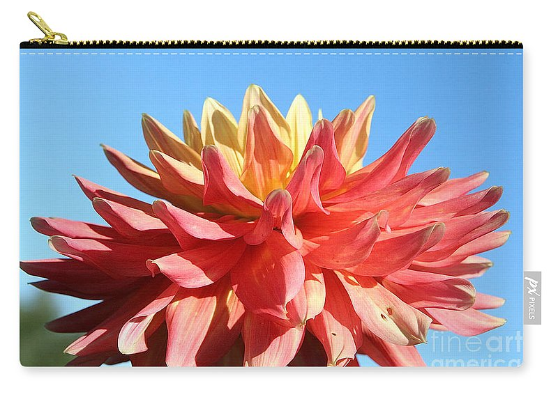 Flower Carry-all Pouch featuring the photograph Sunny Center by Susan Herber