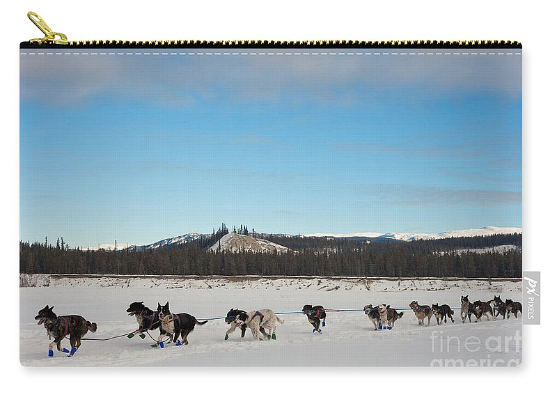 Action Carry-all Pouch featuring the photograph Team Of Sleigh Dogs Pulling by Stephan Pietzko