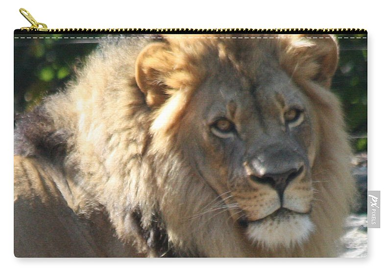 The King Of The Jungle Carry-all Pouch featuring the photograph The King Of The Jungle by John Telfer