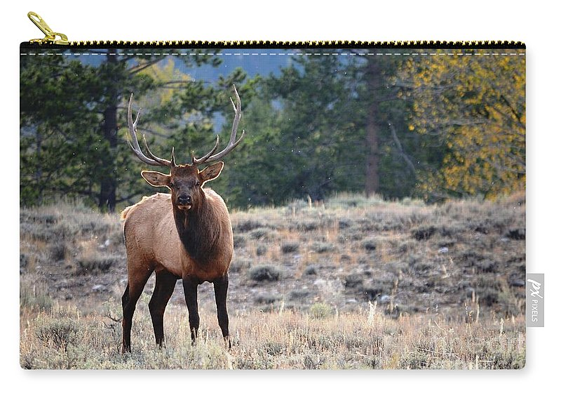 Bull Elk Carry-all Pouch featuring the photograph The Look by Deanna Cagle