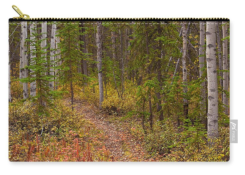 Populus Carry-all Pouch featuring the photograph Trail In Golden Aspen Forest by Stephan Pietzko