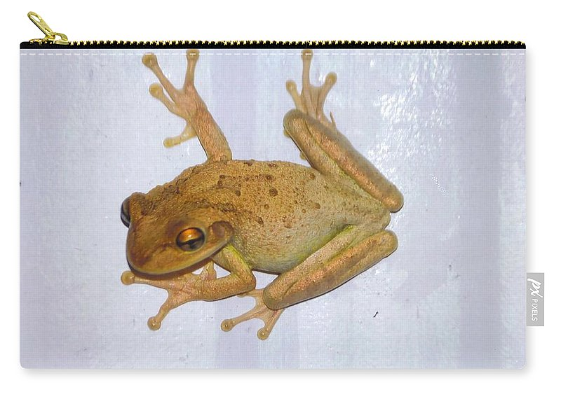 Stuck To Wall Carry-all Pouch featuring the photograph Treefrog by Robert Floyd