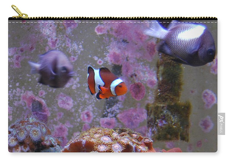Taken Through Glass Of Aquarium Carry-all Pouch featuring the photograph Tropical Fish by Robert Floyd
