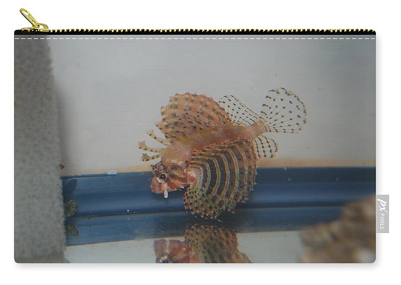 Taken Through Side Of Aquarium Carry-all Pouch featuring the photograph Tropical Lion Fish by Robert Floyd