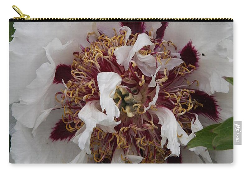 Peonies Carry-all Pouch featuring the photograph White Peony by Christiane Schulze Art And Photography