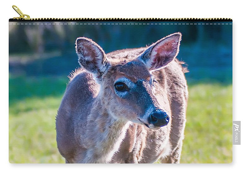 White Carry-all Pouch featuring the photograph White Tail Deer Bambi In The Wild by Alex Grichenko